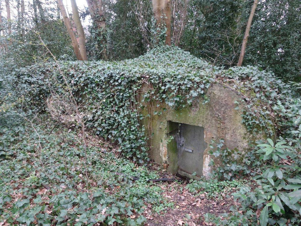 Bunkers in Blaasveld als stille getuigen van WO I